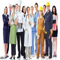 The+Best+Job+in+the+World بهترین شغل دنیا